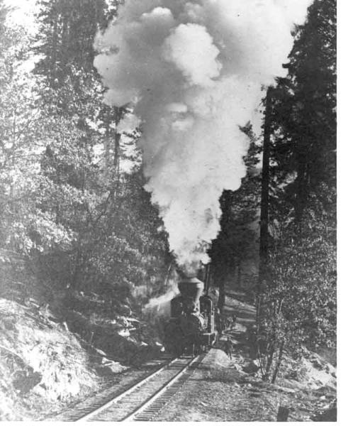 Oakhurst Log Train