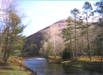 Kettle Creek at Ole Bull State Park